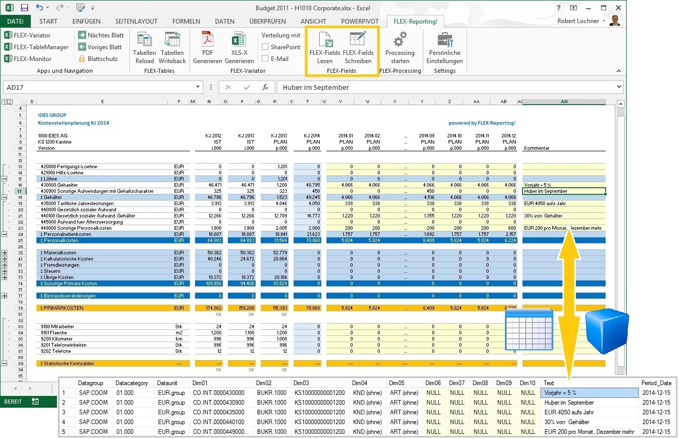 Flex Reporting Release 4 1 Linearis Bi F 252 R Die